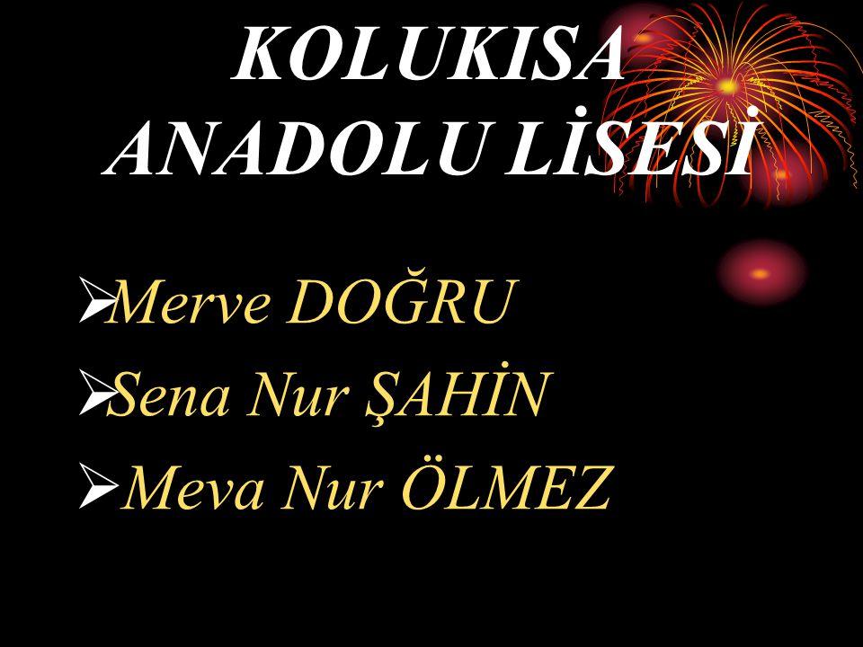 KOLUKISA ANADOLU LİSESİ