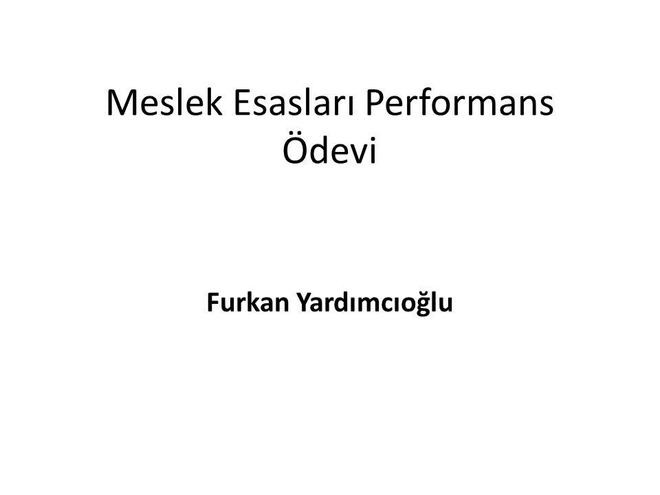 Meslek Esasları Performans Ödevi