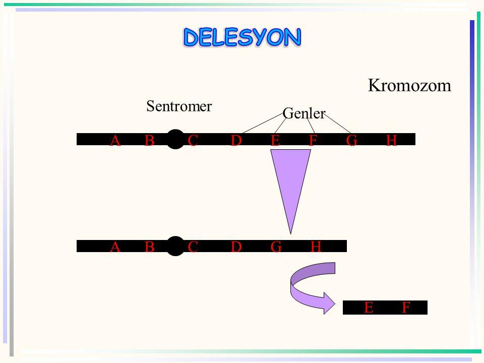 DELESYON Kromozom. Sentromer. A B C D E F G H. Genler.