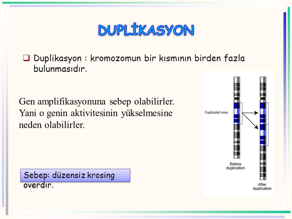 DUPLİKASYON Duplikasyon : kromozomun bir kısmının birden fazla bulunmasıdır.