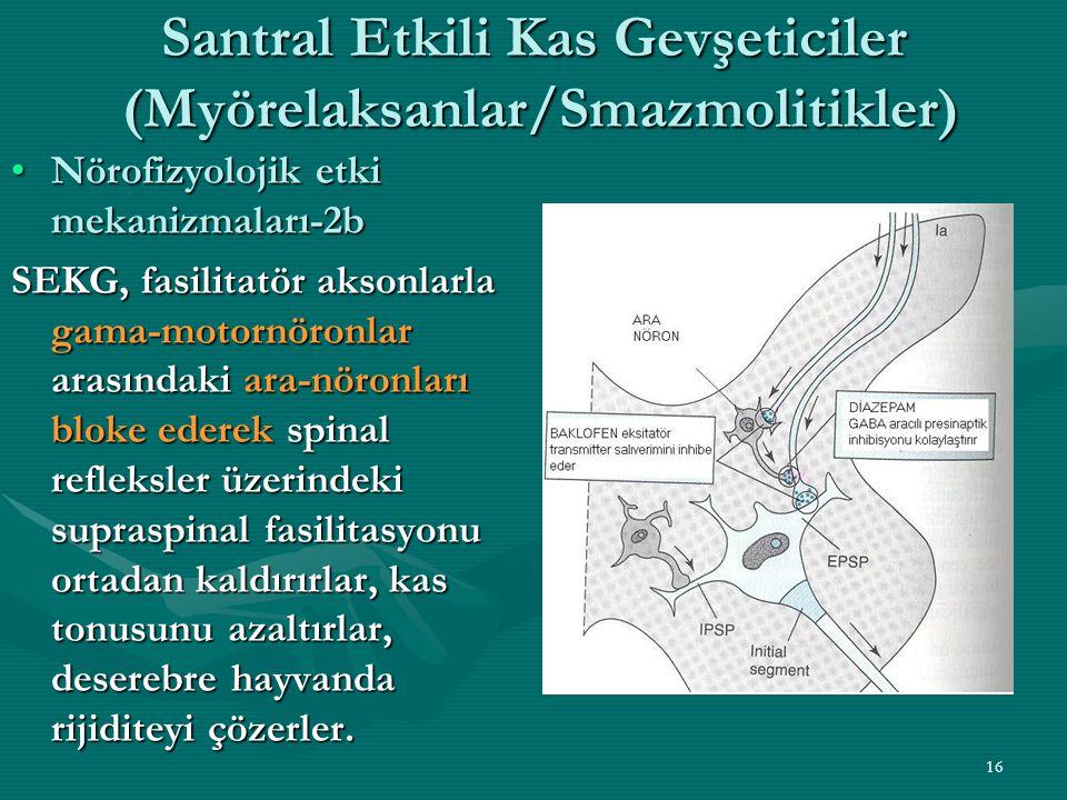 Santral Etkili Kas Gevşeticiler (Myörelaksanlar/Smazmolitikler)