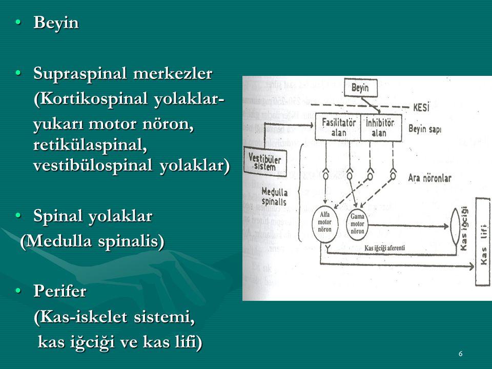 Beyin Supraspinal merkezler. (Kortikospinal yolaklar- yukarı motor nöron, retikülaspinal, vestibülospinal yolaklar)