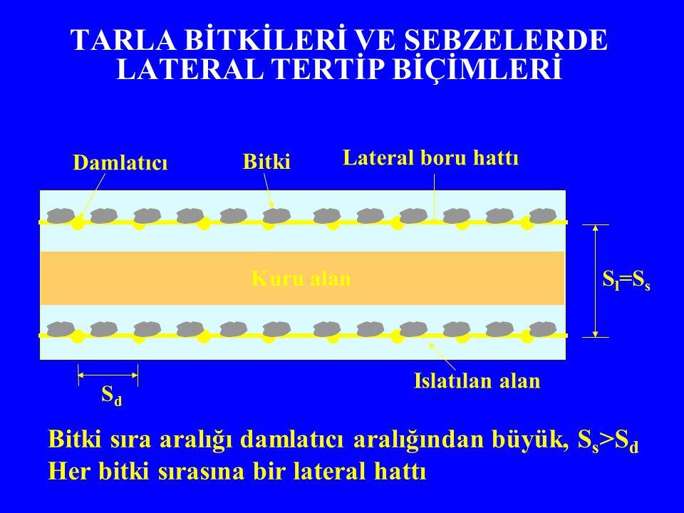 TARLA BİTKİLERİ VE SEBZELERDE LATERAL TERTİP BİÇİMLERİ