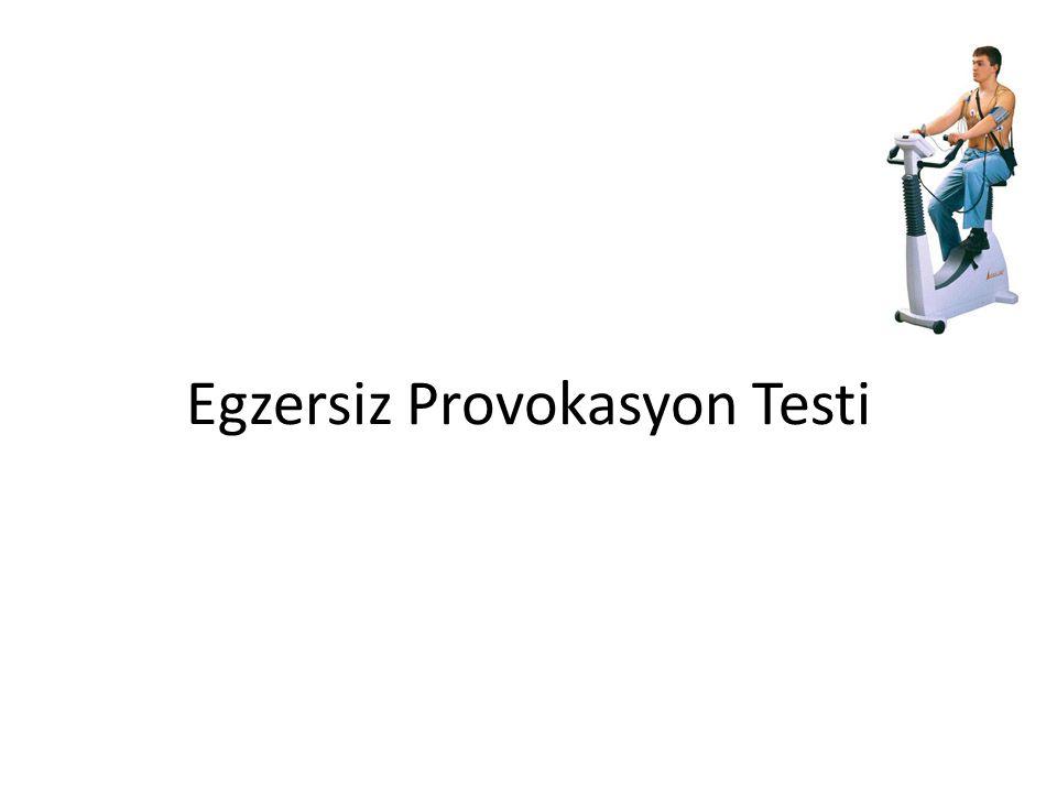 Egzersiz Provokasyon Testi