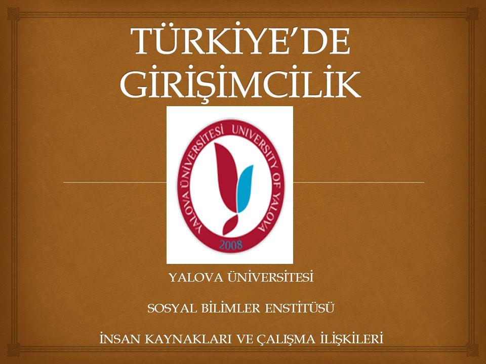 TÜRKİYE'DE GİRİŞİMCİLİK