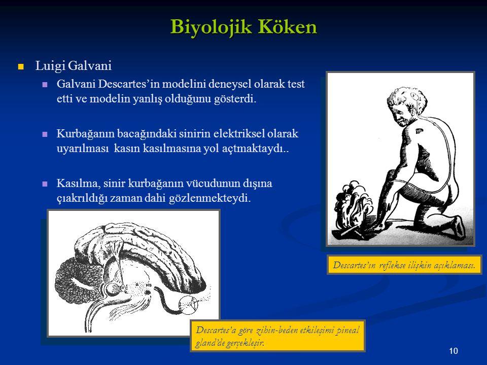 Biyolojik Köken Luigi Galvani