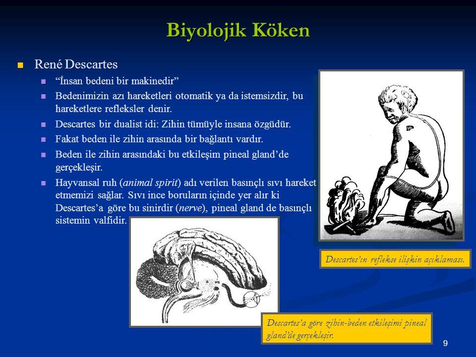 Biyolojik Köken René Descartes İnsan bedeni bir makinedir