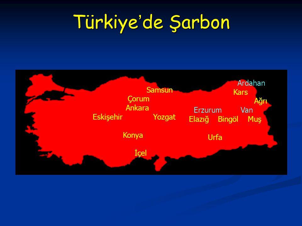 Türkiye'de Şarbon Samsun Ardahan Kars Çorum Ağrı Ankara Erzurum Van