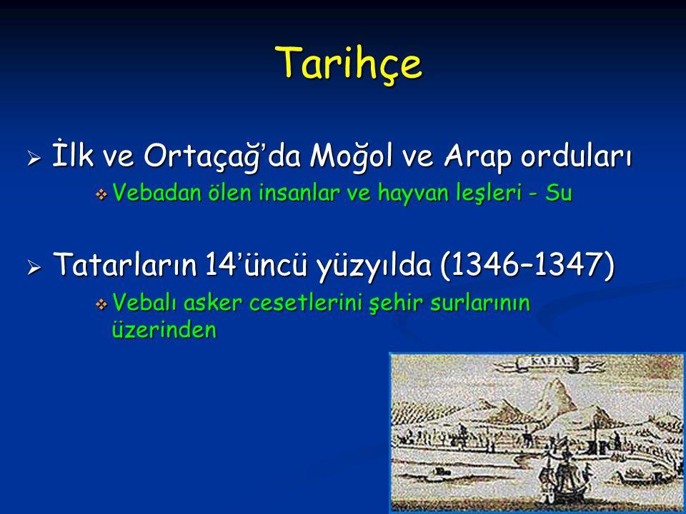 Tarihçe İlk ve Ortaçağ'da Moğol ve Arap orduları
