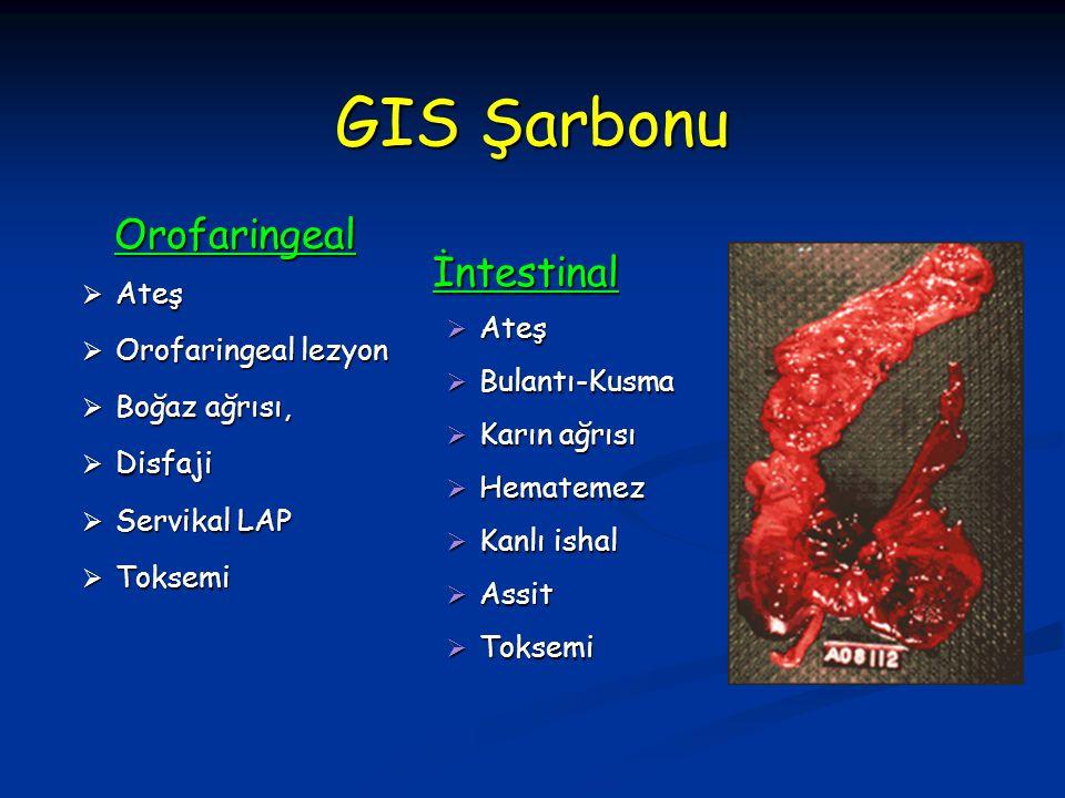 GIS Şarbonu Orofaringeal İntestinal Ateş Ateş Orofaringeal lezyon