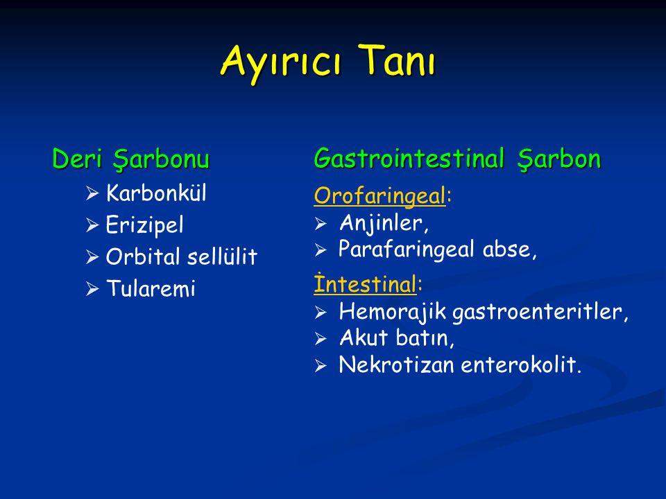Ayırıcı Tanı Deri Şarbonu Gastrointestinal Şarbon Karbonkül