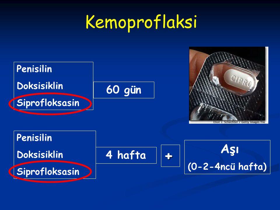 Kemoproflaksi + Aşı 60 gün 4 hafta Penisilin Doksisiklin