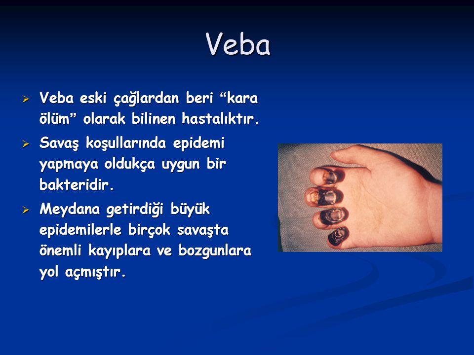 Veba Veba eski çağlardan beri kara ölüm olarak bilinen hastalıktır.