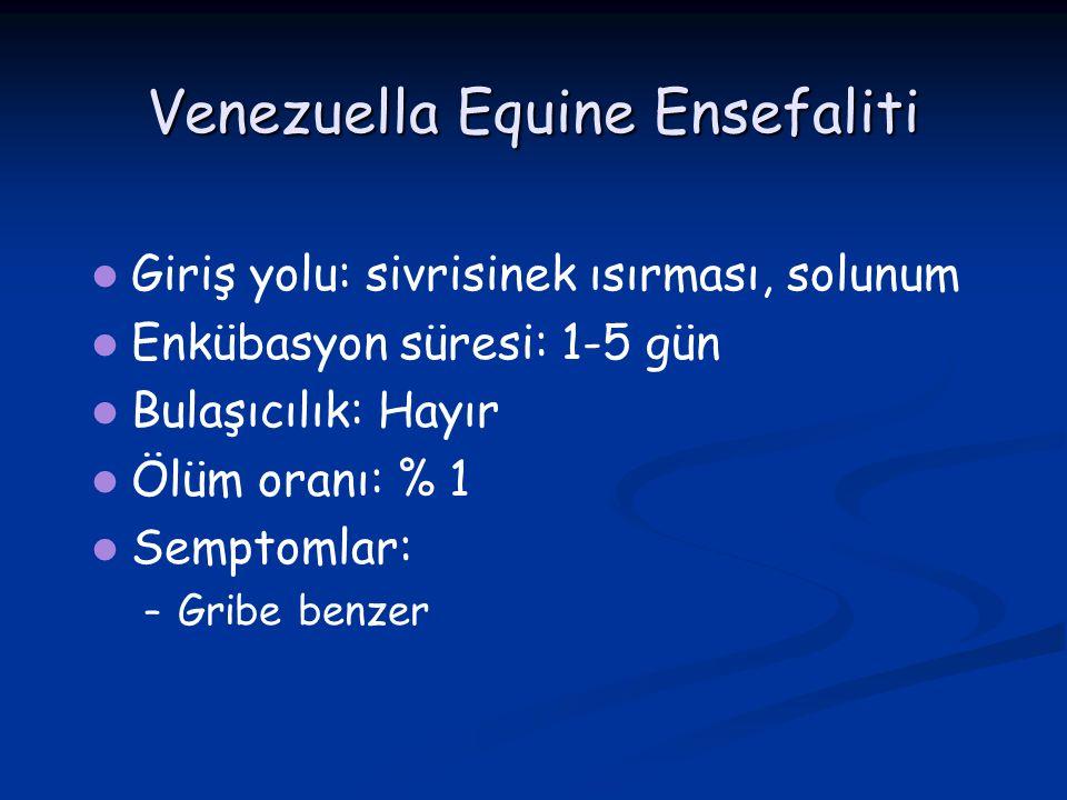 Venezuella Equine Ensefaliti