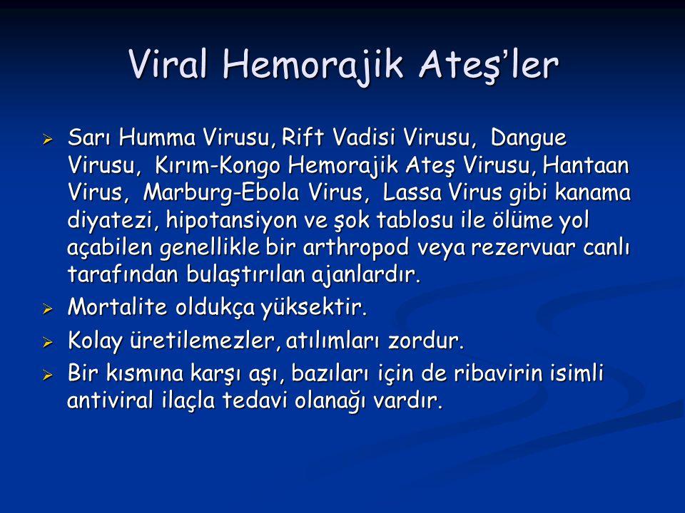 Viral Hemorajik Ateş'ler