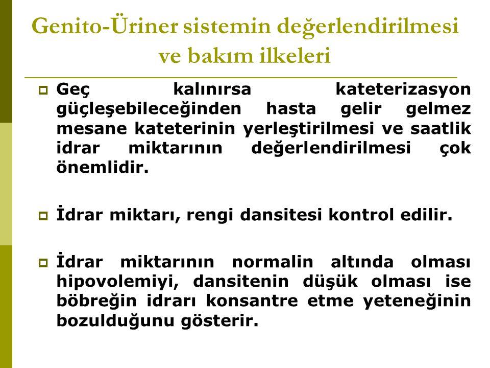 Genito-Üriner sistemin değerlendirilmesi ve bakım ilkeleri