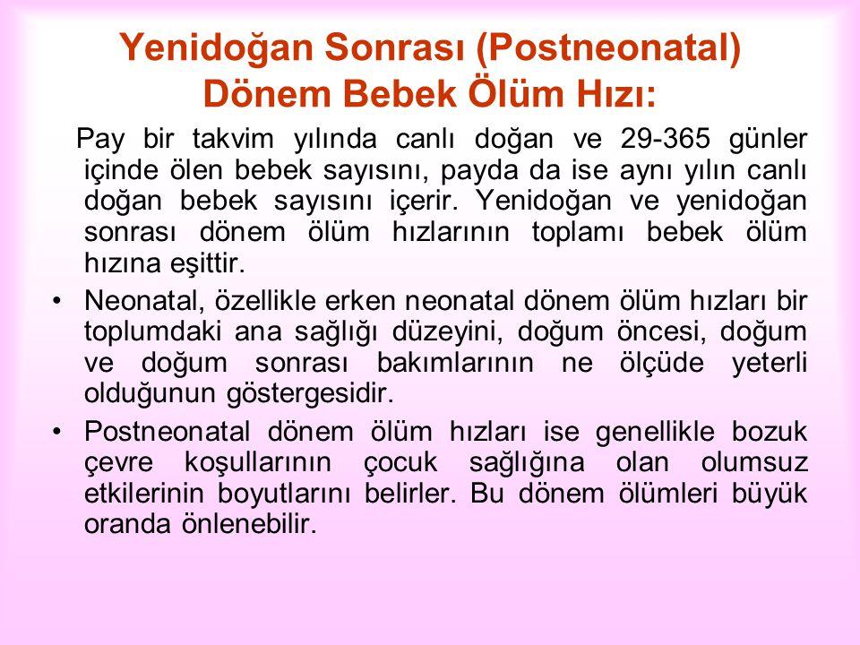 Yenidoğan Sonrası (Postneonatal) Dönem Bebek Ölüm Hızı: