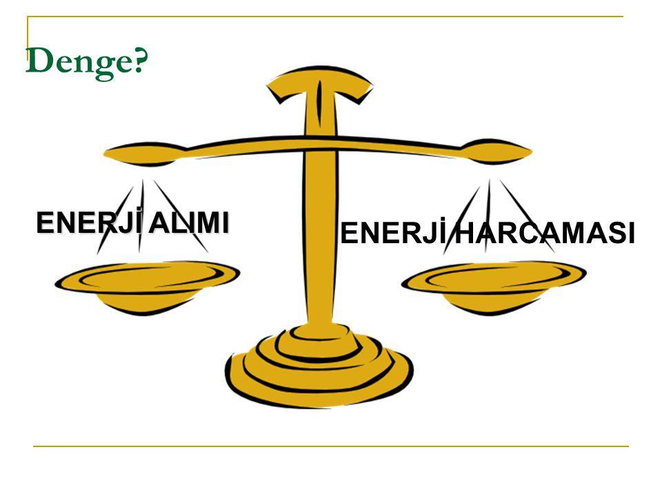 Denge ENERJİ ALIMI ENERJİ HARCAMASI