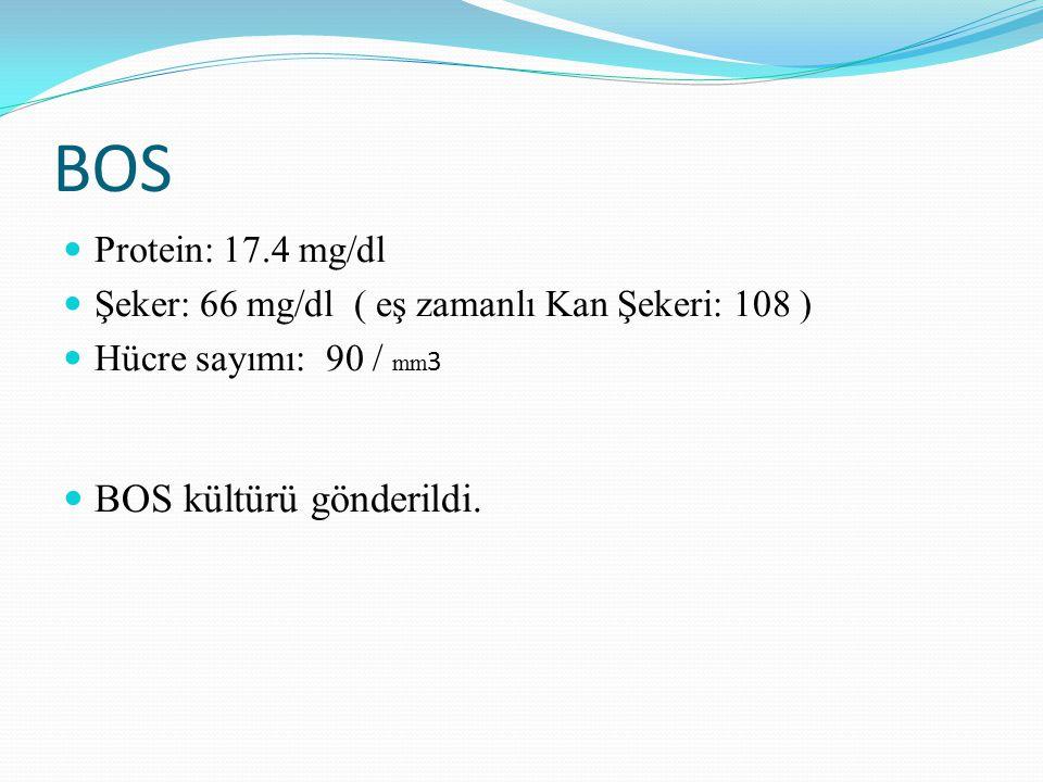 BOS BOS kültürü gönderildi. Protein: 17.4 mg/dl
