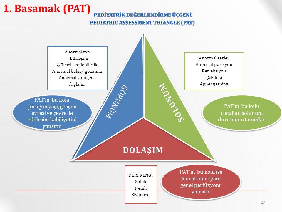 PEDIATRIC ASSESSMENT TRIANGLE (PAT)