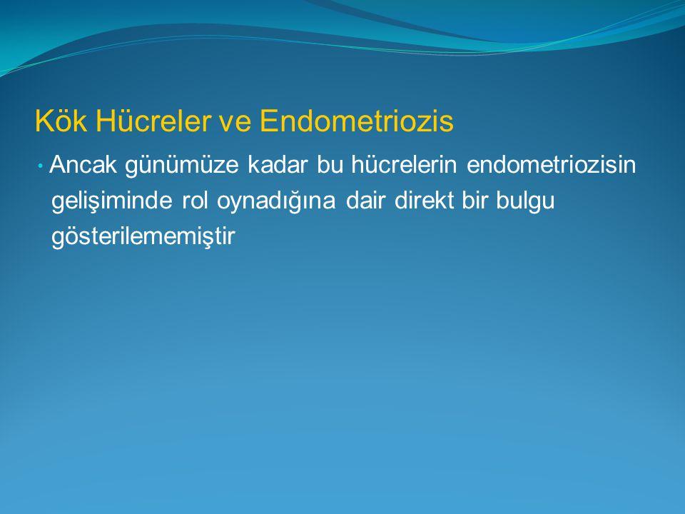 Kök Hücreler ve Endometriozis