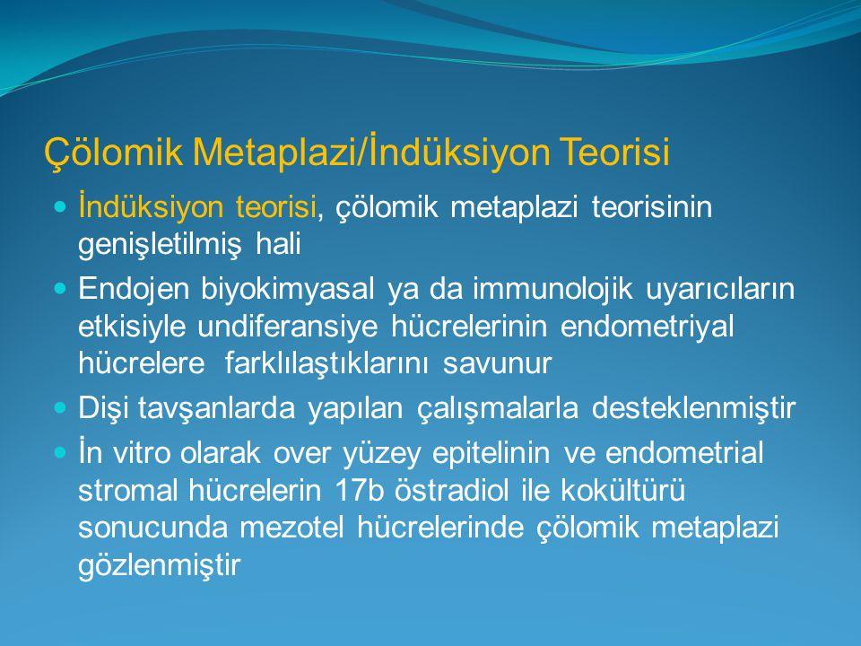 Çölomik Metaplazi/İndüksiyon Teorisi