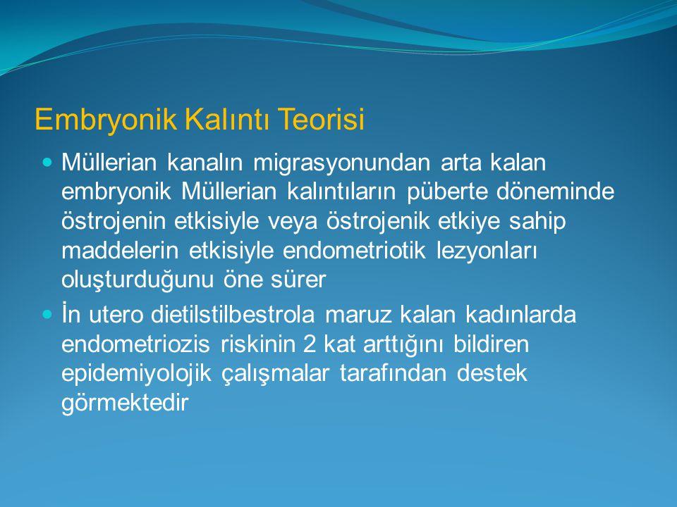 Embryonik Kalıntı Teorisi