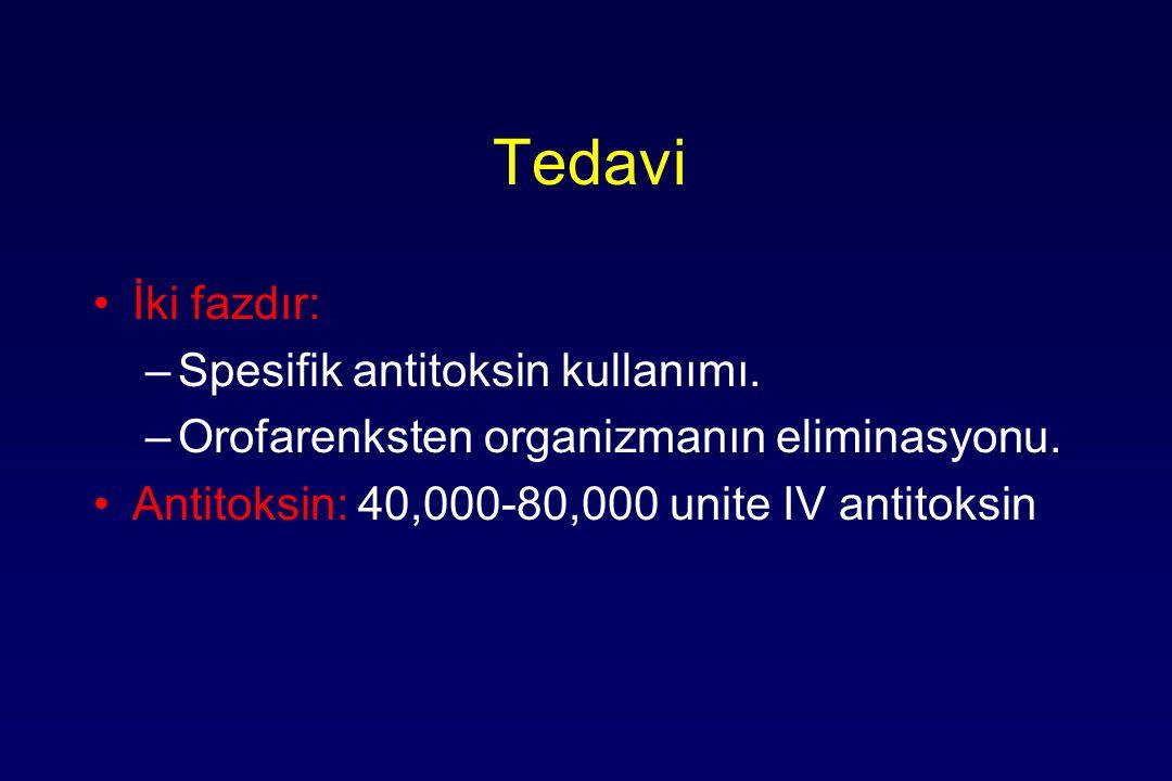 Tedavi İki fazdır: Spesifik antitoksin kullanımı.