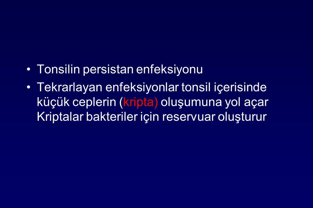 Tonsilin persistan enfeksiyonu