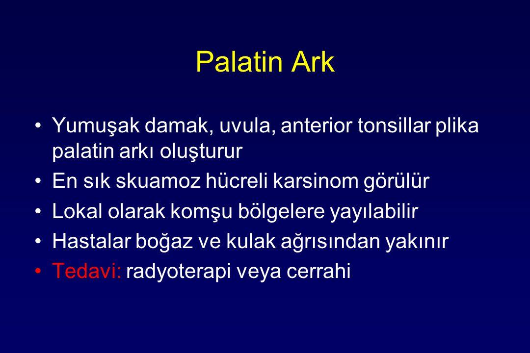 Palatin Ark Yumuşak damak, uvula, anterior tonsillar plika palatin arkı oluşturur. En sık skuamoz hücreli karsinom görülür.