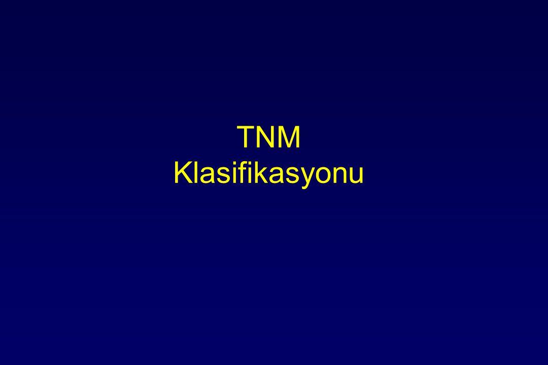 TNM Klasifikasyonu