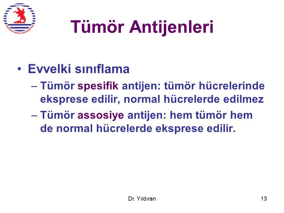 Tümör Antijenleri Evvelki sınıflama