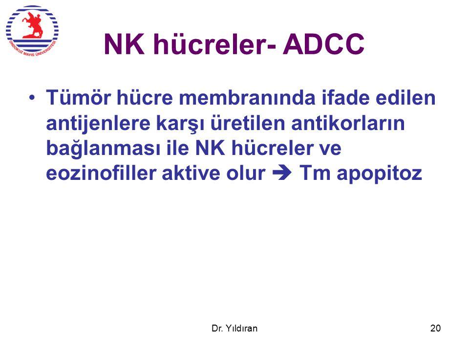 NK hücreler- ADCC