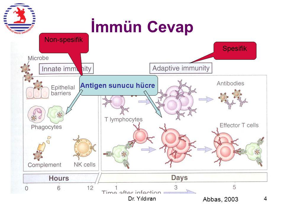İmmün Cevap Non-spesifik Spesifik Antigen sunucu hücre Abbas, 2003