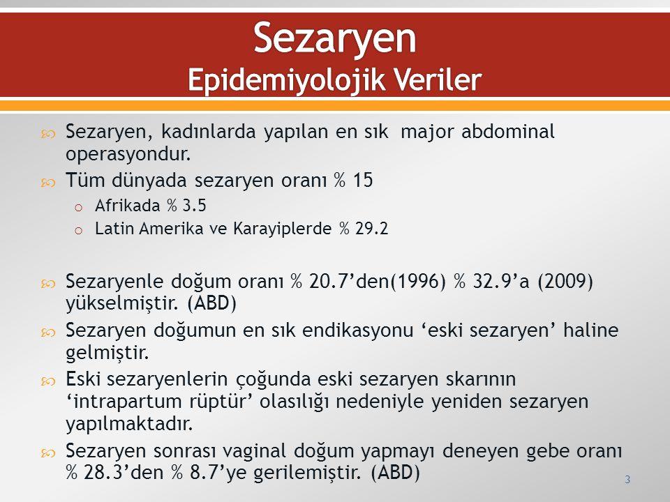 Sezaryen Epidemiyolojik Veriler
