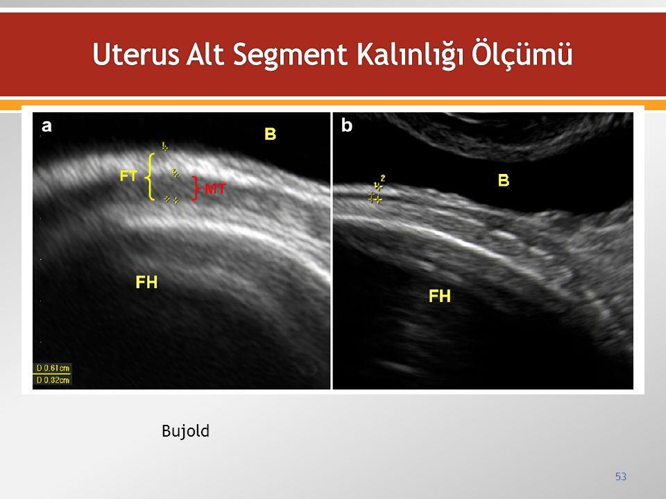 Uterus Alt Segment Kalınlığı Ölçümü