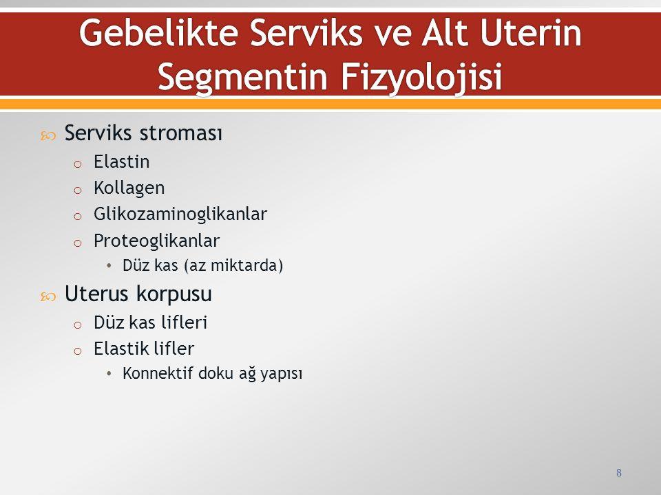 Gebelikte Serviks ve Alt Uterin Segmentin Fizyolojisi