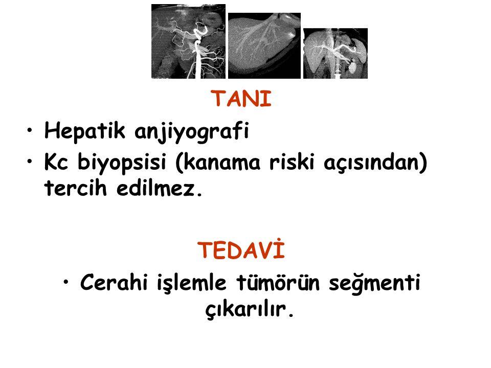Cerahi işlemle tümörün seğmenti çıkarılır.