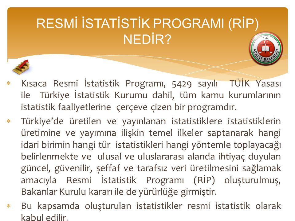 RESMİ İSTATİSTİK PROGRAMI (RİP) NEDİR