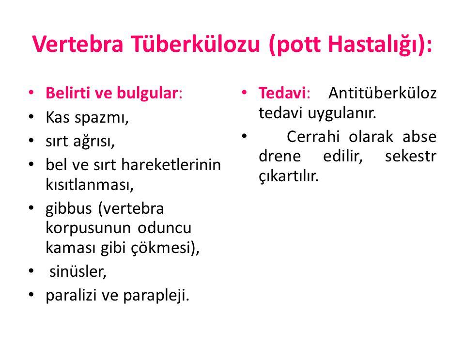Vertebra Tüberkülozu (pott Hastalığı):