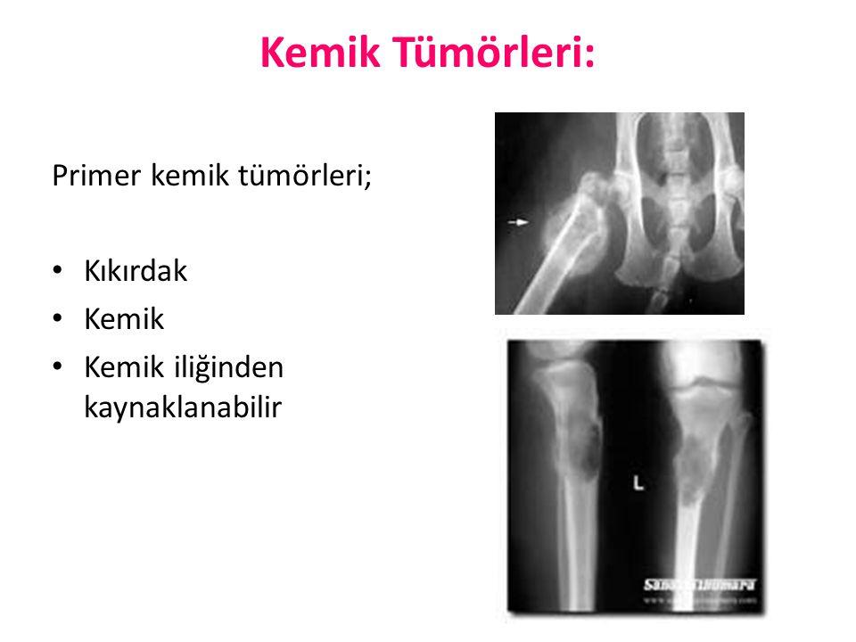 Kemik Tümörleri: Primer kemik tümörleri; Kıkırdak Kemik