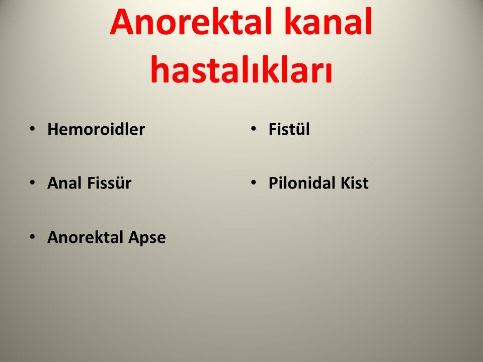 Anorektal kanal hastalıkları