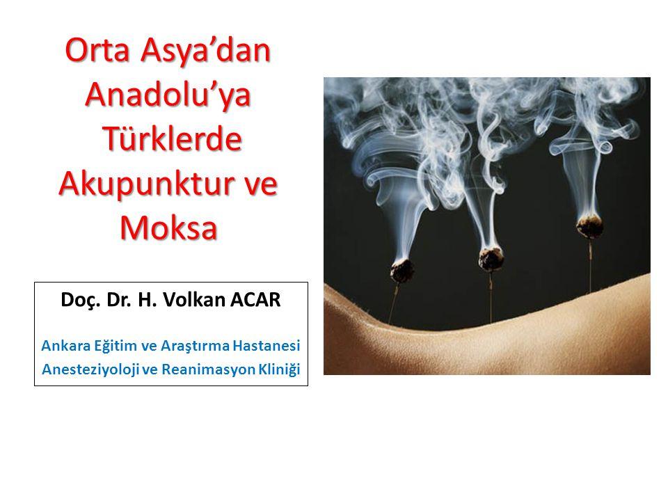 Orta Asya'dan Anadolu'ya Türklerde Akupunktur ve Moksa