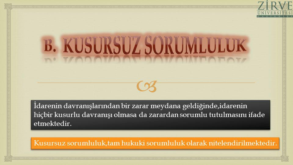 B. KUSURSUZ SORUMLULUK
