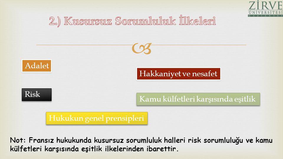 2.) Kusursuz Sorumluluk İlkeleri