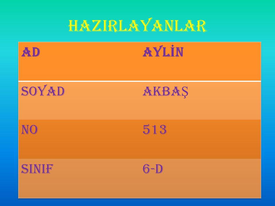 HAZIRLAYANLAR AD AYLİN SOYAD AKBAŞ NO 513 SINIF 6-D
