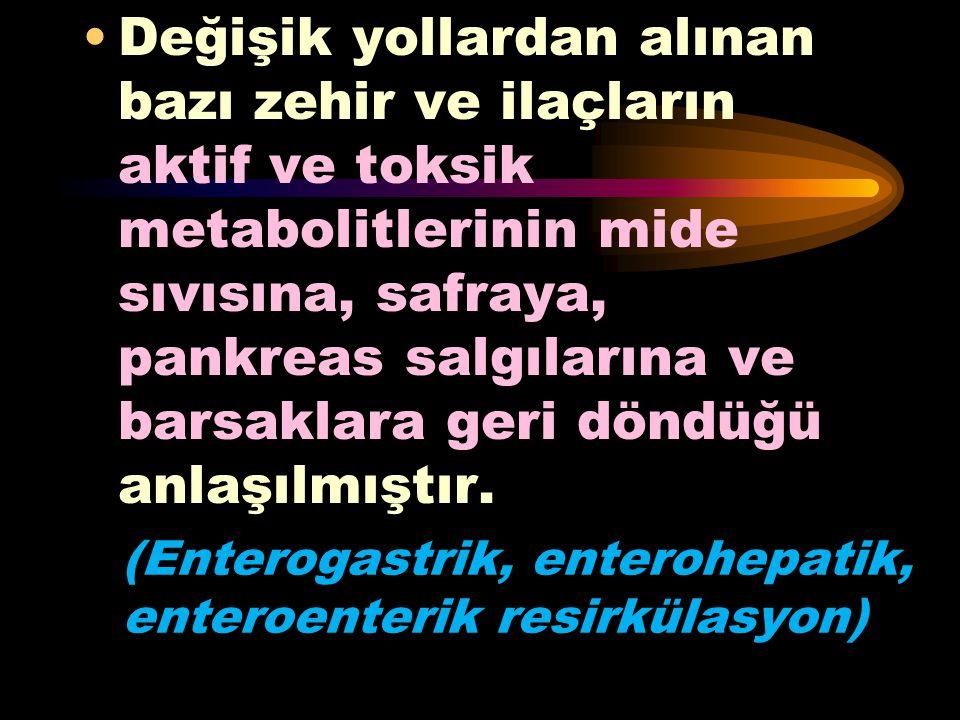 (Enterogastrik, enterohepatik, enteroenterik resirkülasyon)