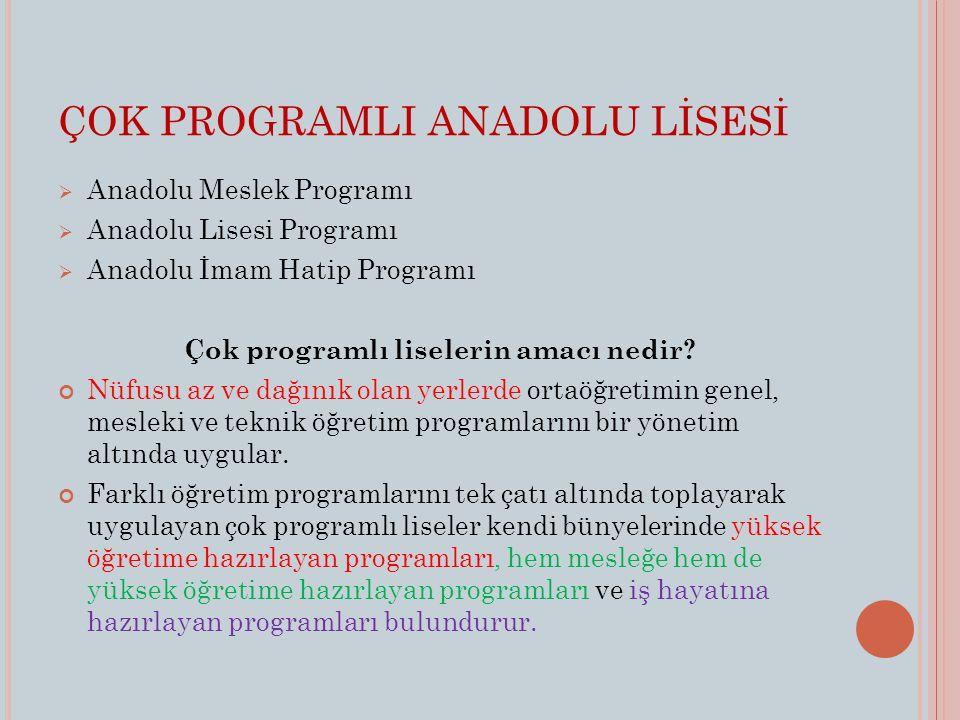 ÇOK PROGRAMLI ANADOLU LİSESİ