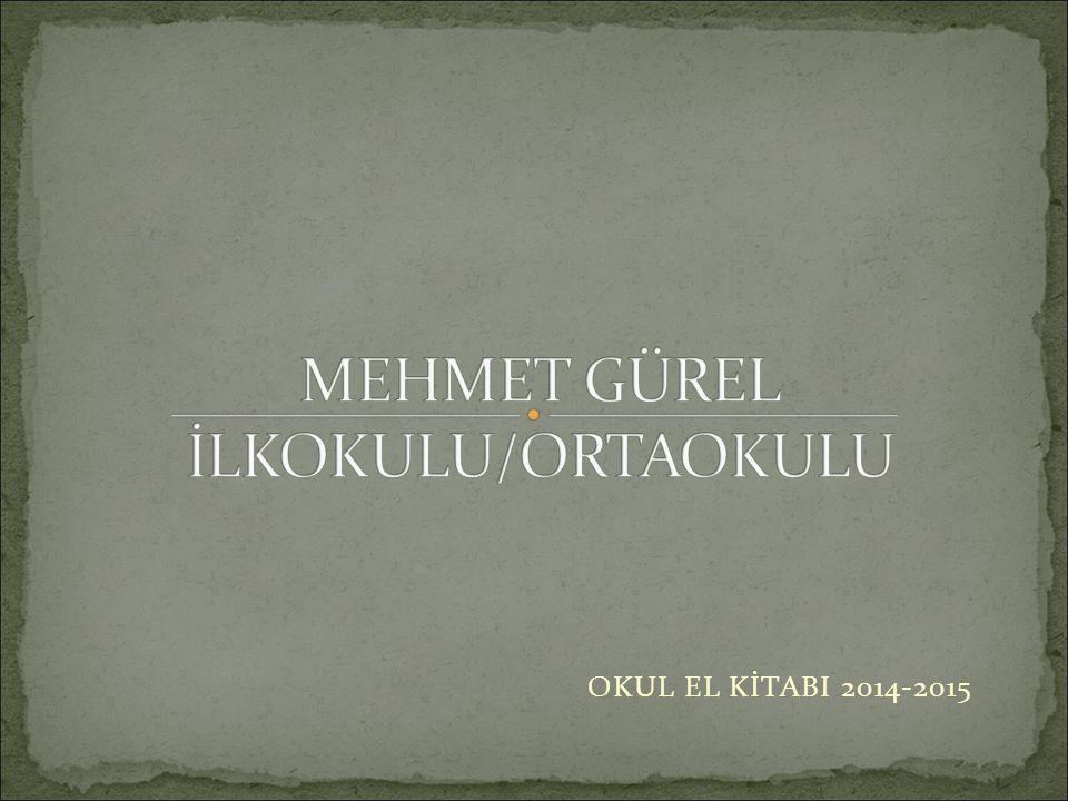 MEHMET GÜREL İLKOKULU/ORTAOKULU