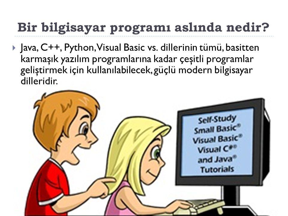 Bir bilgisayar programı aslında nedir